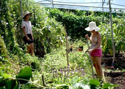 huertas de nosara group gardening